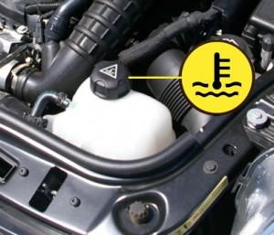 Engine coolant tank