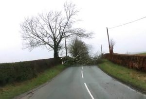 How to drive in windy weather conditions