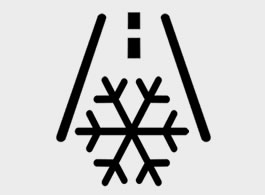 Kia Frost Warning (snowflake) dashboard warning light symbol